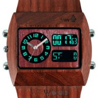 Would you like a wood watch? Try WeWood. Environmentally friendly.